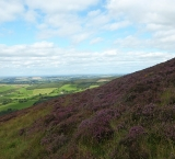 Sugar Loaf, Wicklow mountains