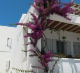 That's why I love Greek Houses very much. Paros