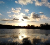 sunset-in-richmond-park-london