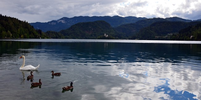Lake Bled Slovenia - Incredibly beautiful lake