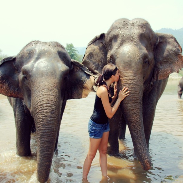 Elephant Nature park Chiang Mai - me kissing the trunk of a elephant who was blinded. She might not see but she sure can feel.