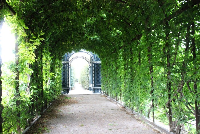 Get lost in the Schonbrunn Palace Vienna gardens