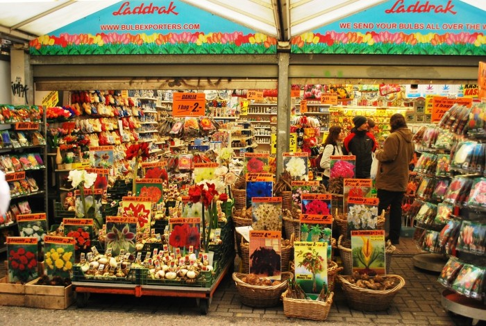 Let the flower market surprise you with its colors and perfumes