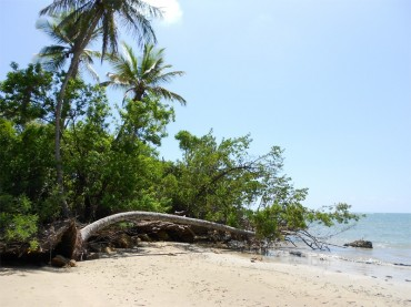 Boipeba island, the best kept secret of Brazil