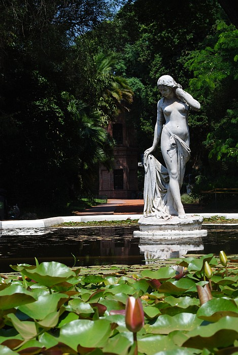 a detail from Botanical Garden in Palermo