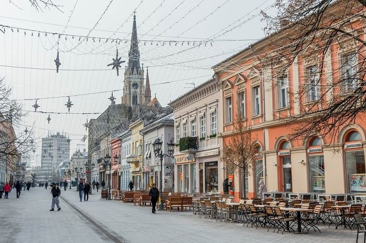 what to do in novi sad serbia