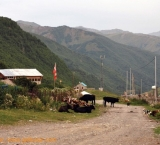 Georgian roads are in bad conditions and often occupied by cows