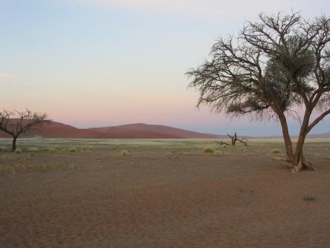 200603_namibija_0033
