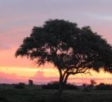 200603_namibija_0256