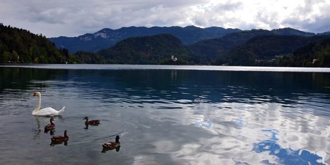 Lake Bled Slovenia - Incredibly beautiful lake