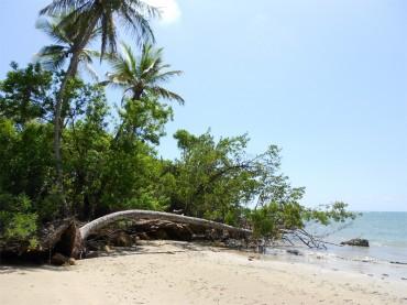 Boipeba island, the best kept secret of Brazil