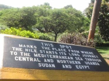 Uganda – The lush greenery and wildlife, including gorillas