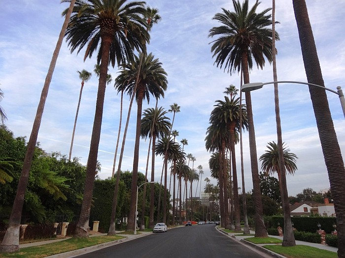 Fun things to do in Los Angeles - A tour of Beverly Hills is a must