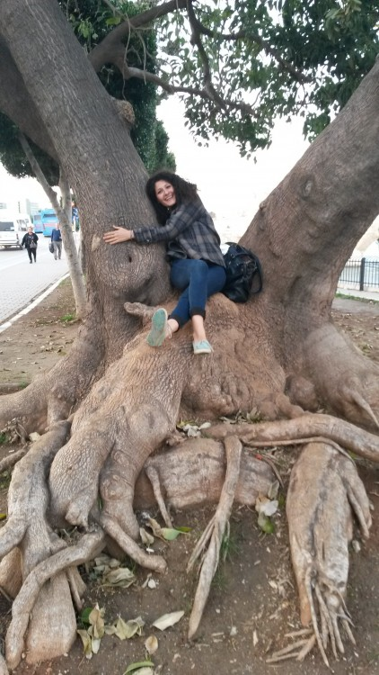 Sedef is hugging a tree because we love trees. ( Remember Gezi Park? :) )