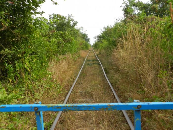 Bamboo Train is fun.